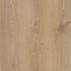 Laminate AGT Premier Oak Trend (RK501)